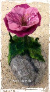 Blume auf Stein